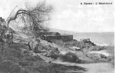 """L'Abattoir Photo prise au-dessus  de la petite plage du  """"Rocher de Reich"""""""