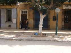 Rue d'Orl�ansville ---- LACURIE Edouard  Boulangerie PEREZ