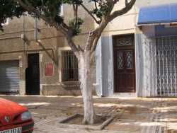 """Rue d'Orl�ansville maison de Lacurie Aim� et Laroussi BADAOUI avec le magasin dessous  """"Tout pour le batiment"""" non loin de l'Hopital"""