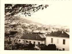 TENES Photo prise de la porte ouest de la ville  (porte de France) ---- cot� jardin, � droite la maison de Roger POLI � gauche la villa jumelle occup�e par  Mme GADET et Mme RONDONY