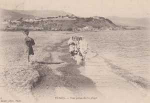 Carte Postale de la Plage en 1920