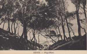 Carte postale de la Plage Blanc