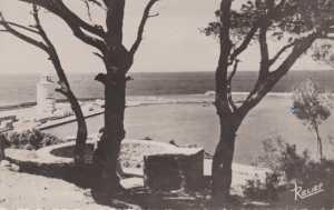 Carte Postale du Port vu des Canons