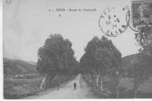 TENES route de Cherchell