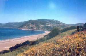 Francis-Garnier la plage