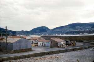 TENES au fond du port