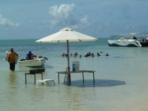 Highlight for Album: Ile Maurice 2012