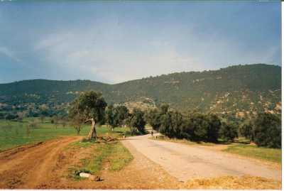 route allant vers les Fermes  EYSSAUTIER / LONJON BEAUSSIER / MAZARS