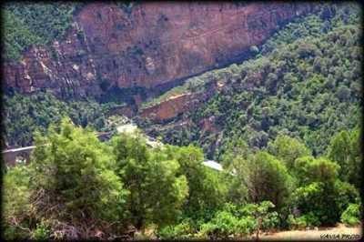 Les Gorges entre TENES et Montenotte