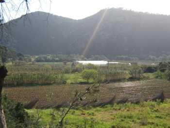 Paysage du CHENOUA