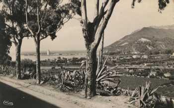 Photo de 1950 ---- Magnifique vue de la descente vers la Plage
