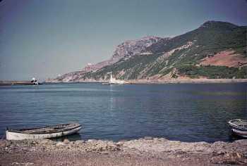 TENES 1959