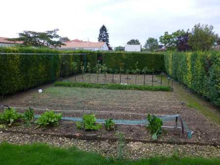 le jardin potager d'Albert GUYET