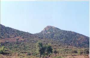 Le Marabout de Sidi Abdelkader