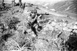 Tir au fusil MAS 36/51