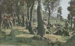 Camping en Kabylie