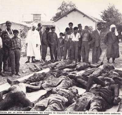 MELOUZA 300 cadavres