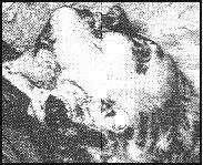 11 Mai 1957  Mme BARRAL 44 ans