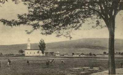 BATNA - La MOSQUEE