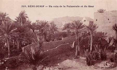 BENI OUNIF - La Palmeraie