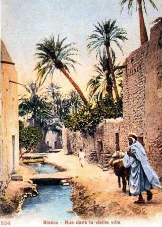 BISKRA Une rue dans la ville Arabe