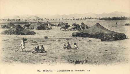 BISKRA - Campement de nomades