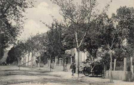 BOUIRA - Rue d'Alger