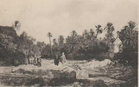 L'Oued et L'Oasis