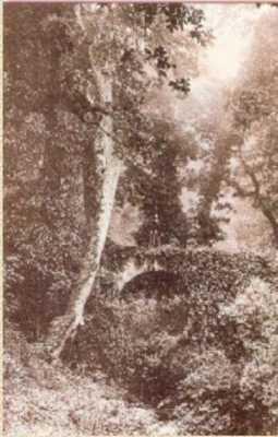 BUGEAUD - L'Aqueduc Romain