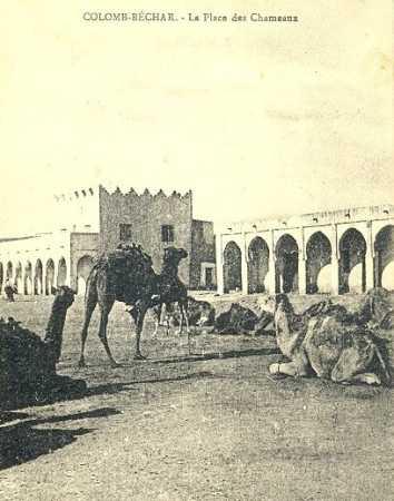 COLOMB-BECHAR Place des chameaux