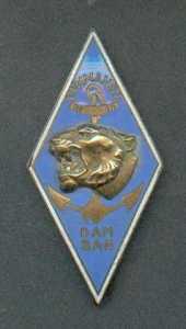 Insigne du Commando Dam San