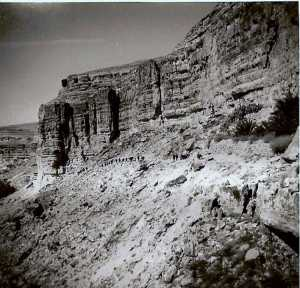 Progression dans le Sud Constantinois en 1959