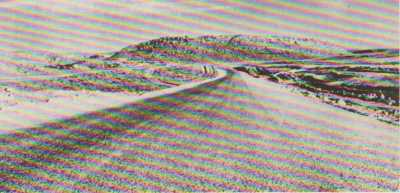 La route DJELFA - LAGHOUAT