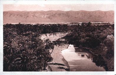 EL-KANTARA - L'Oued et la Palmeraie