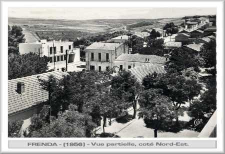 Vue panoramique de FRENDA 1956