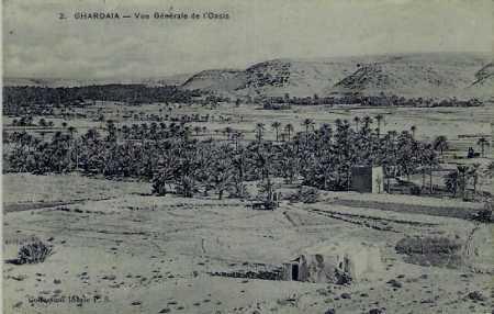 GHARDAIA - L'oasis