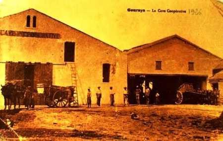 GOURAYA - La Cave