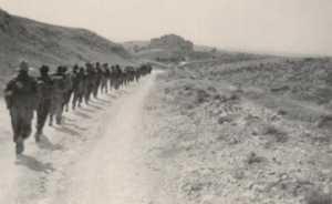 1956 - Secteur de SOUK-AHRAS