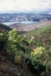 Commando dans l'Ouarsenis (Oued Fodda)