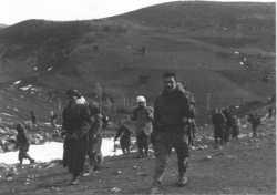 Le massif du Djebel DIRA (1810m)