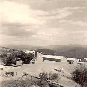 Moul el Rabah  Kimono 20  en 1962