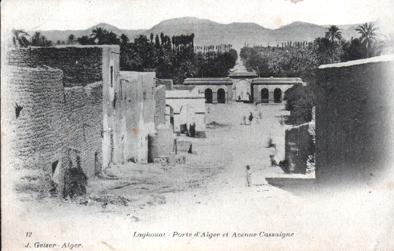 LAGHOUAT - Avenue de Cassaigne