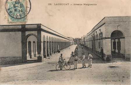LAGHOUAT - L'Avenue Marguerite