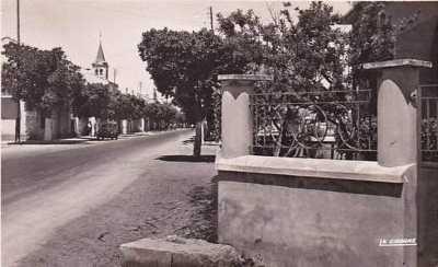 LA SENIA - L'Avenue GUYNEMER