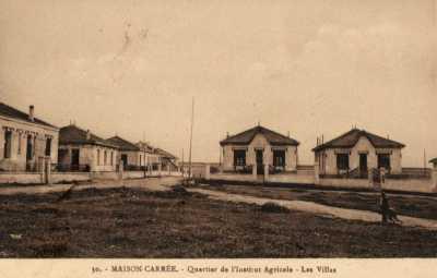 MAISON-CARREE Quartier de l'Institut Agricole