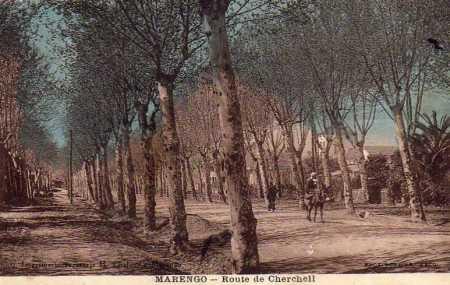 MARENGO - La Route de Cherchell