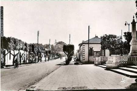 L'Avenue de Cherchell