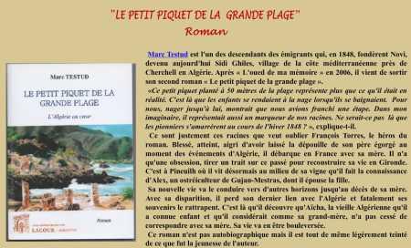 """Marc TESTUD ---- """"Le petit piquet de la grande plage"""""""