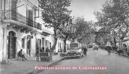PALESTRO - Avenue de Constantine