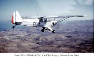 PIPER L-21 BM TLEMCEN en 1961